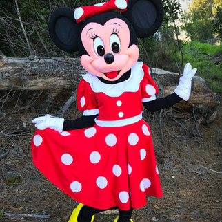 Mrs. Mouse Minnie Party Character