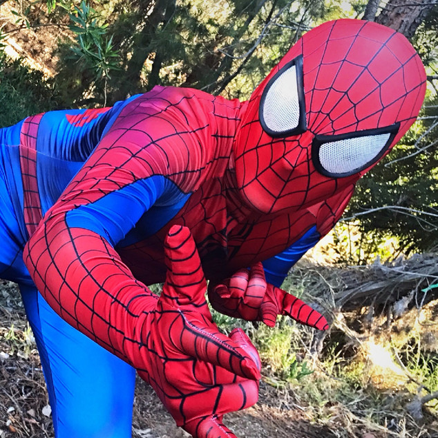 The Web Hero Spider Man Party Character