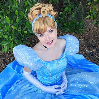 Cinderella Party Character