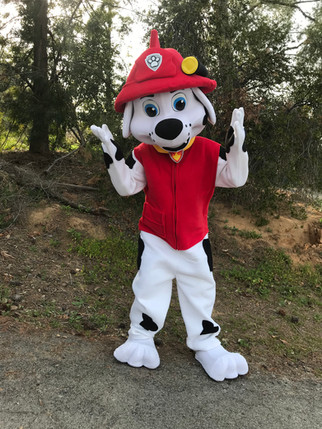 Fireman Puppy