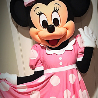 Mrs. Pink Minnie Mouse Party Character