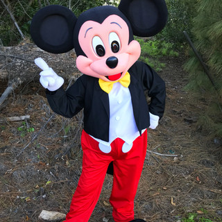 Mr. Mouse Mickey Party Character