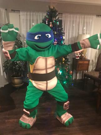 Karate Turtle