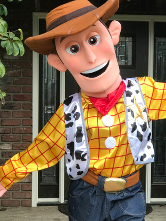 Woody Toy Story Doll