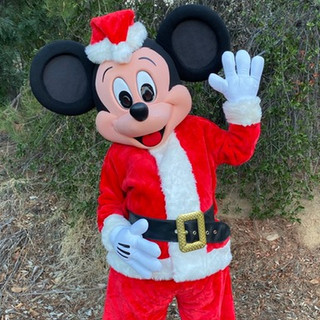 Holiday Mr. Mouse