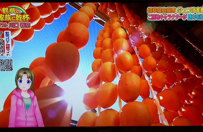 NHK「鶴瓶の家族に乾杯」