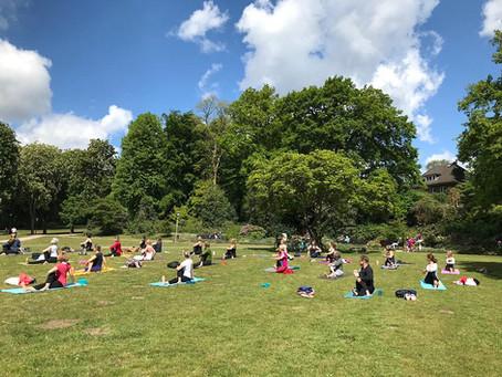 Yoga unterm Magnolienbaum oder am Elbstrand
