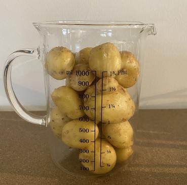 ROKO Farming erntet Kartoffeln, Erdbeeren, Spinat und Basilikum