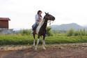 Ven a cabalgar