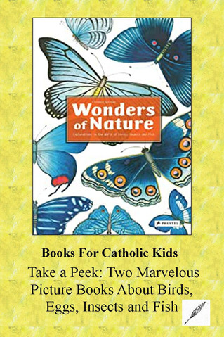 Take A Peek: Two Marvelous Picture Books On Birds, Eggs, Insects And Fish