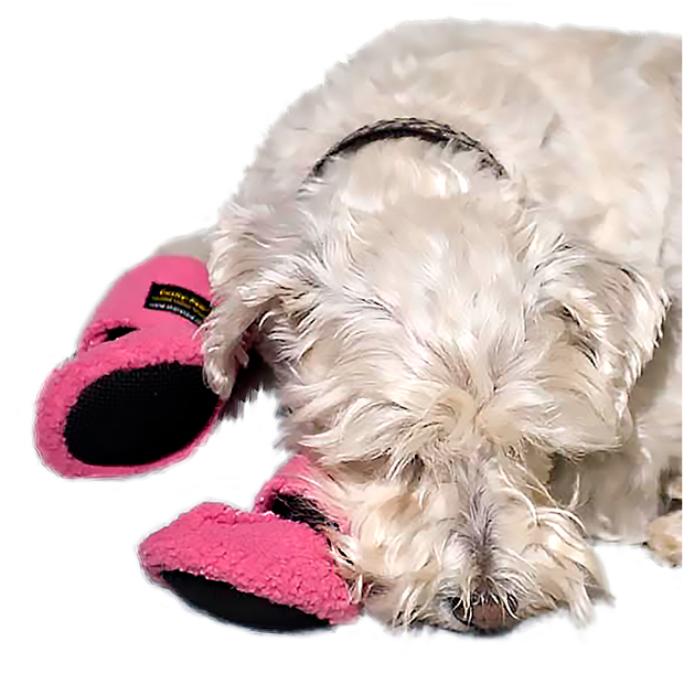 CUSHY PAW SLIPPERS
