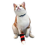 cat leg brace, leg brace for small animals, limb support for cats