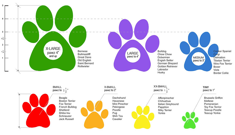 Thera-Paw traction for dogs