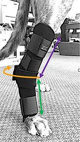 Tarso-Flex Sports Wrap Measuring Guide