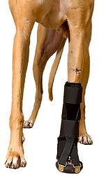 Thera-Paw Dorsi-Flex Assist, dog front leg support, dog leg brace, vet supplies