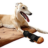 dog slippers, dog slippers, injured dog paw, painful paws, shoes for greyhounds