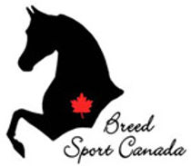 Equine Canada High Point Saddle Seat Rider of the Year 2014