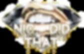 NICDT Final Logo.png