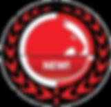 new rgpAsset 4_4x.png