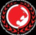 Renzo Gracie Pocono Logo