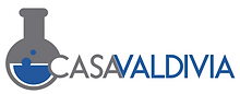 Logo Casa Valdvia