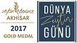 2017-AKHISAR-gold.png
