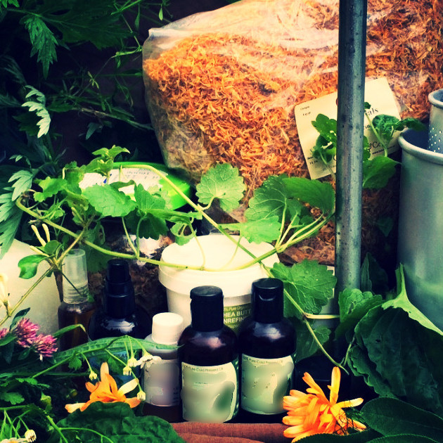 Herbal Preparations Class - £60