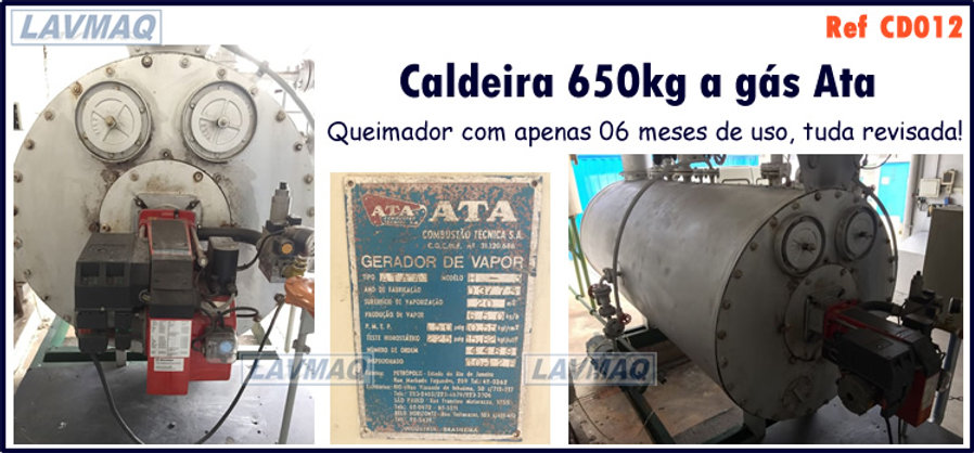 Caldeira usada 650kg por hora a gás Ata para lavanderia industrial LAVMAQ