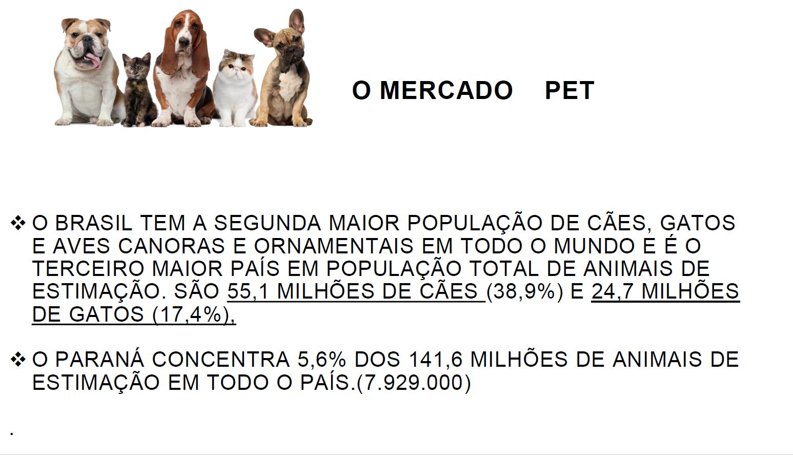 Apresentação Lavanderia Pet e toalheiro pag03