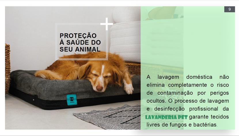 Apresentação Lavanderia Pet e toalheiro pag08