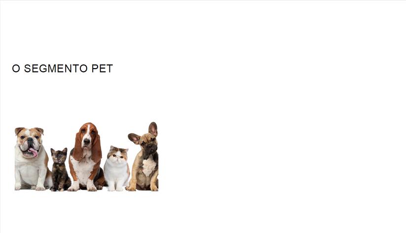 Apresentação Lavanderia Pet e toalheiro pag06