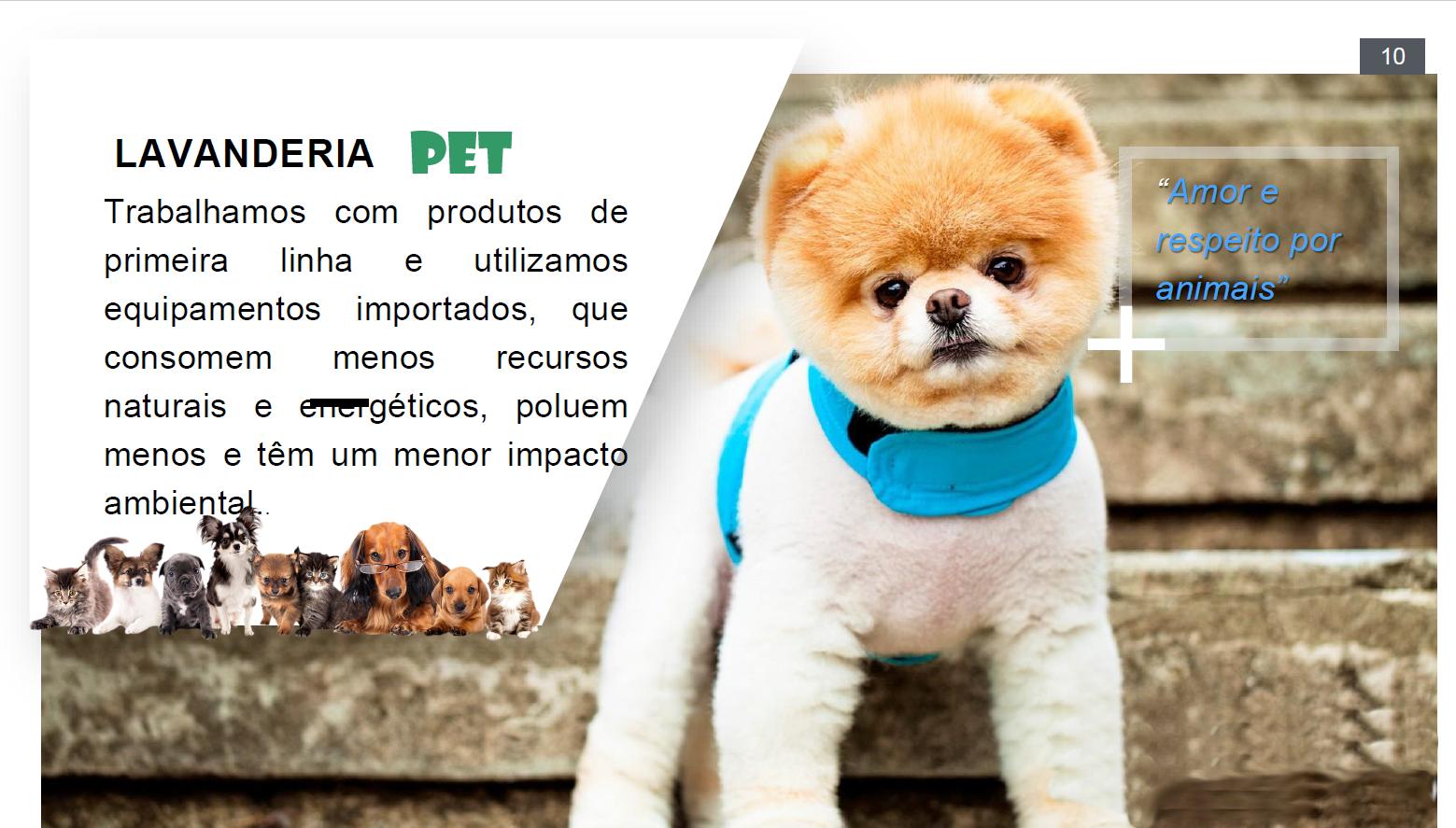 Apresentação Lavanderia Pet e toalheiro pag09