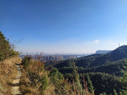 WeChat Image_20200423211316.jpg