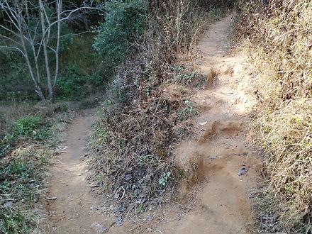 Trail Up.jpg