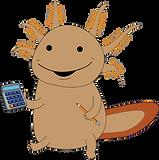 Max (BTA Axolotl) - Calculator + Pencil_edited.png