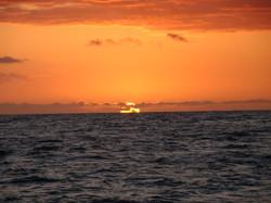 Sunset on Holo Holo Sunset Cruise