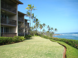 Lawn Next to Ocean