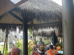 Hawaiian Ukelele Music