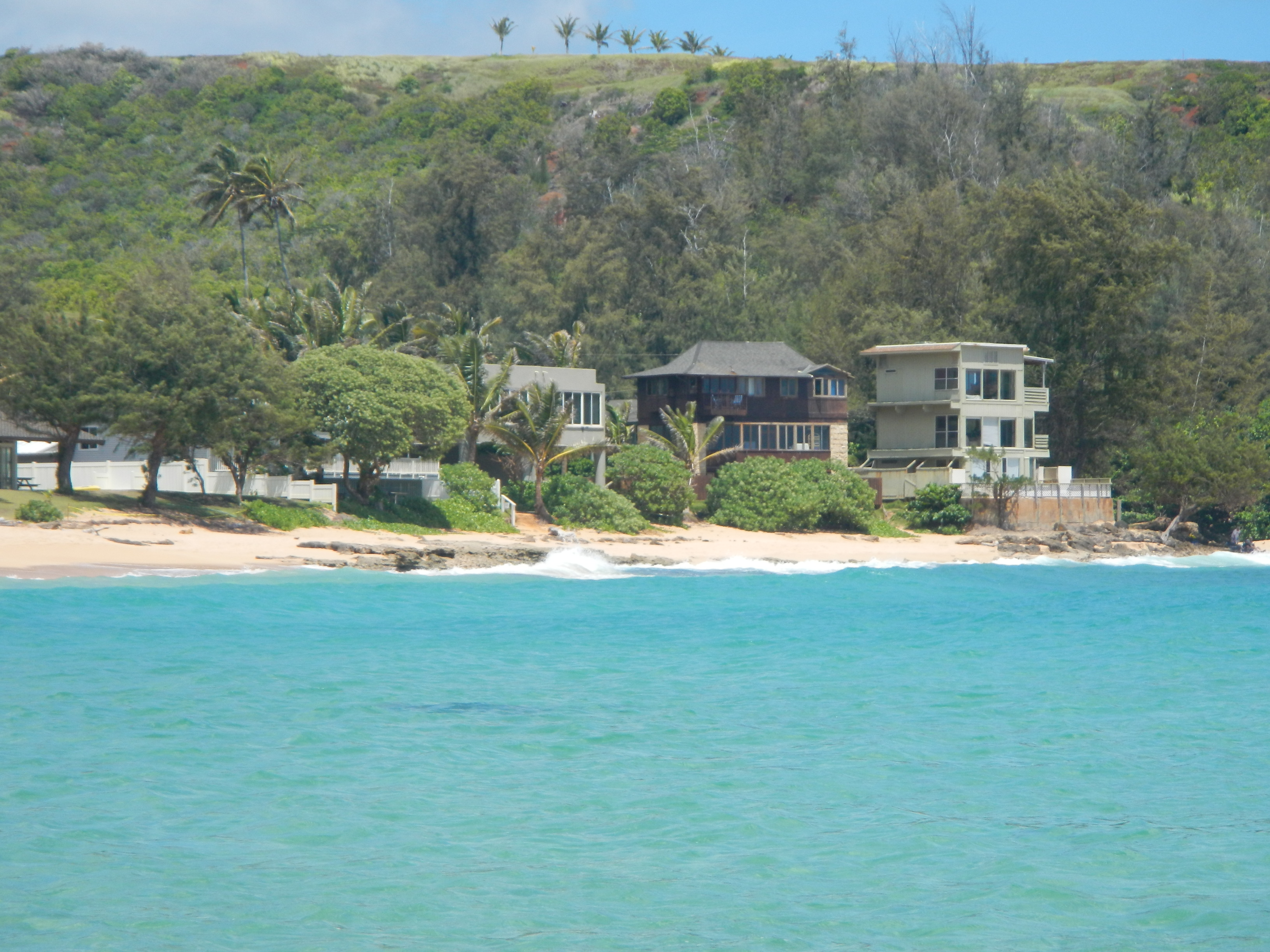 Beach Houses with Path to Beach