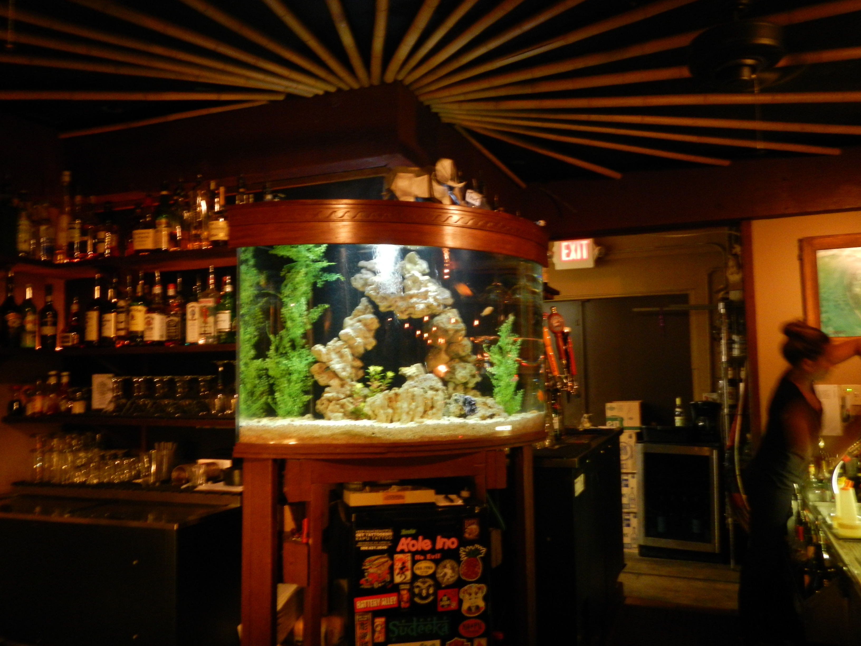 Aquarium Behind Bar