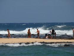 Big Waves Tamed by Reefs