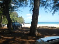 Open Shady Parking on Beach