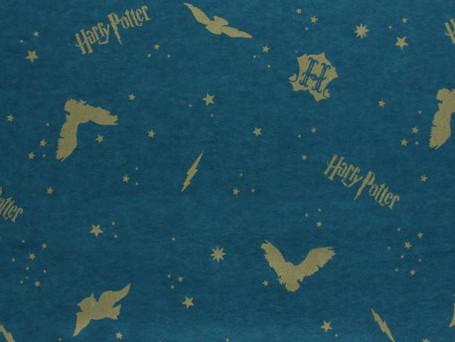 Harry Potter Bleu