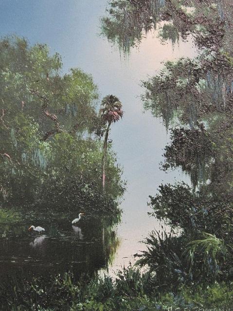 Florida Misty Morning.JPG