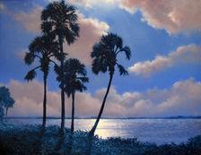 Night Palms.jpeg