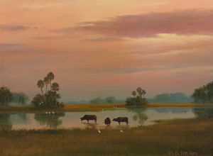 Florida Cattle .JPG