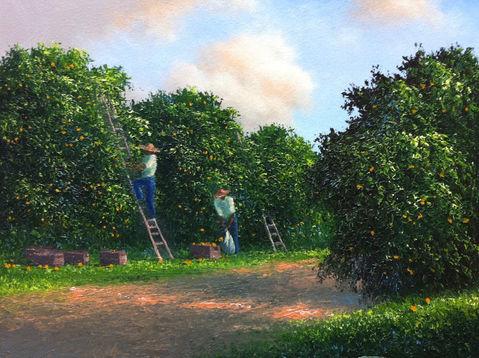 Orange Grove Pickers.jpeg