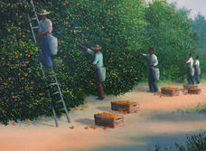 Old Florida Orange Pickers .jpeg