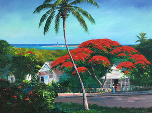 Bahamas Poinciana Tree.jpeg