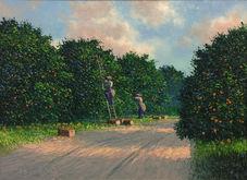 Orange Grove Pickers.JPG